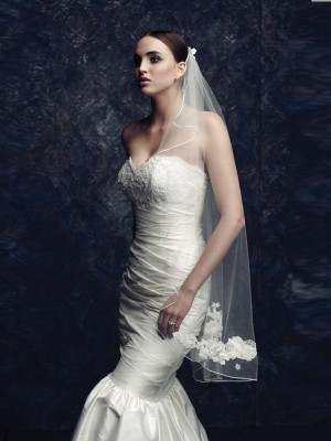 Elegant Tulle With Embroidery Wedding Veils