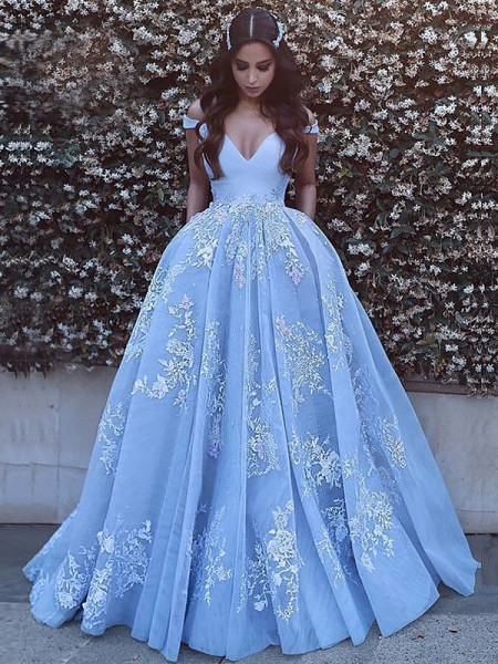 Ball Gown Sleeveless Off-the-Shoulder Applique Sweep/Brush Train Tulle Dresses